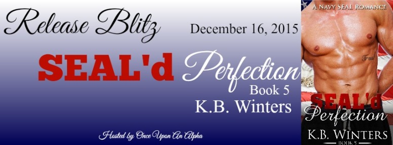 Seald-Perfection-5-RB-Banner