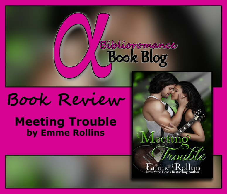 Book Review-Meeting Trouble