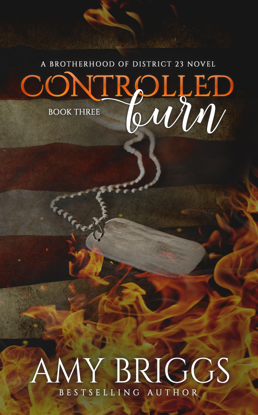 controlled-burn-book-3-cover
