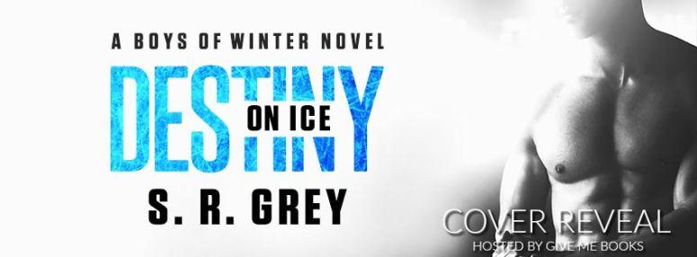 destiny-on-ice-cr-banner