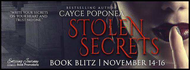 stolen-secrets-bb-banner